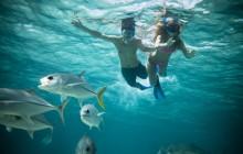 Hol Chan Snorkel Tour with Flight from San Ignacio