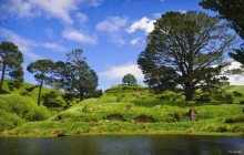 Hobbiton Movie Set & Waitomo Glow Worm Cave (Private Transport)