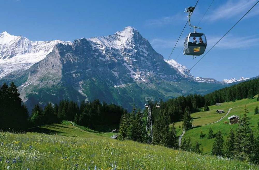 Grindelwald & Interlaken from Zurich