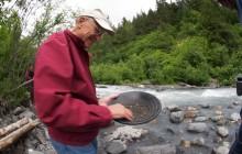 Salmon Berry Travel & Tours