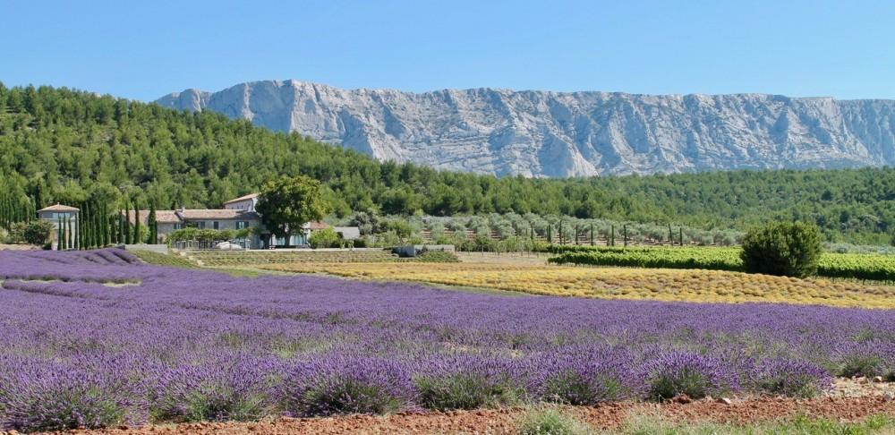 Wine Tour in Aix en Provence