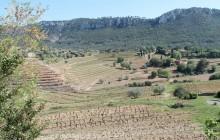 Planet Provence