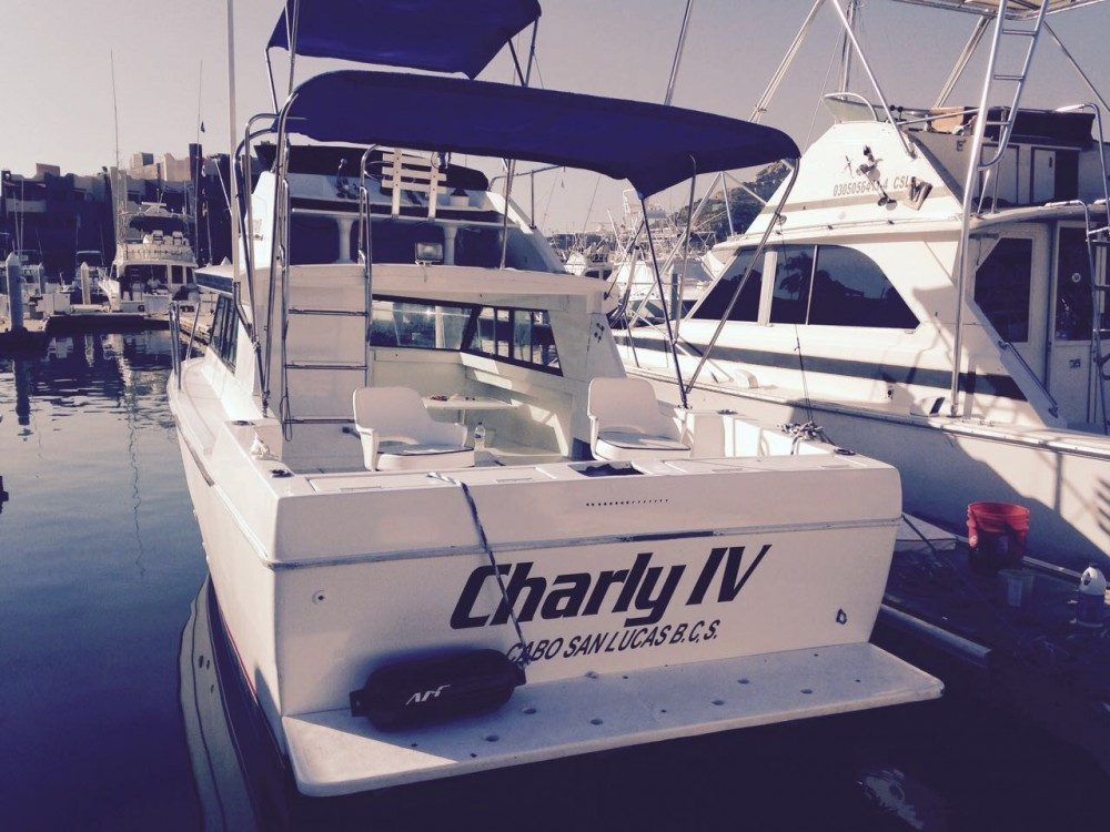 28' Custom Cabin Cruiser Private Charter - 4 Pax