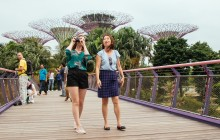 Private: Singapore's Famous Sights & Secrets Tour