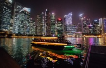 Private: Magical Singapore by Night Tour