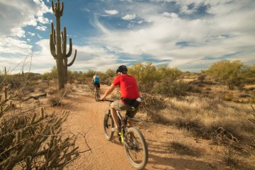 A picture of Arizona's Sonoran Desert 4 Day/3 Night Trip