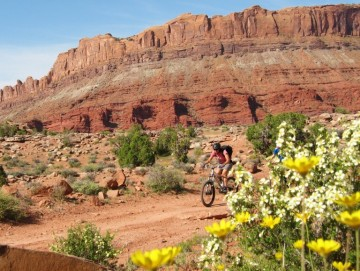 A picture of Grand Staircase-Escalante 5 Day Mountain Bike Trip