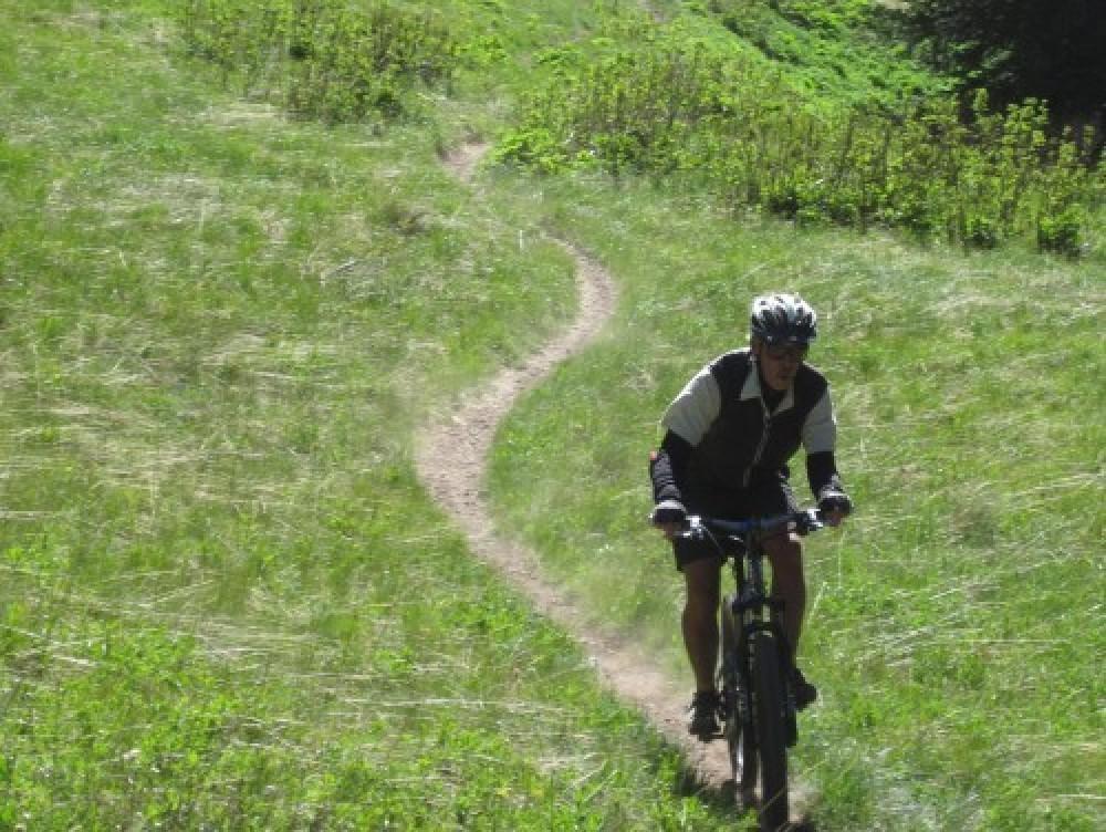 Whole Enchilada | Hazzard Down Full Day Mountain Bike Tour