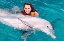 Dolphin Swim Adventure: Cozumel