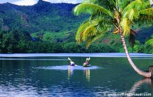 Na Pali Coast Sea Kayak Tour