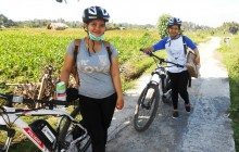 E-Bike Cycle: South Ubud Nature & Villages