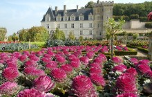 Small Group Loire Valley 2 Day Wine Tour with 4* Hotel