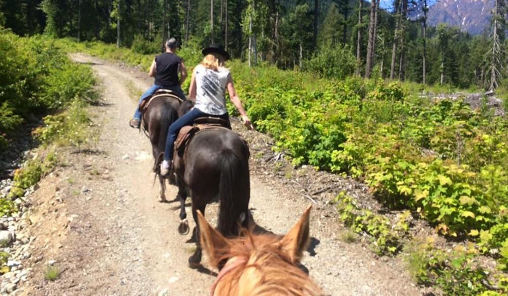 Half Day Horseback Ride in the Birkenhead - 9:00 AM