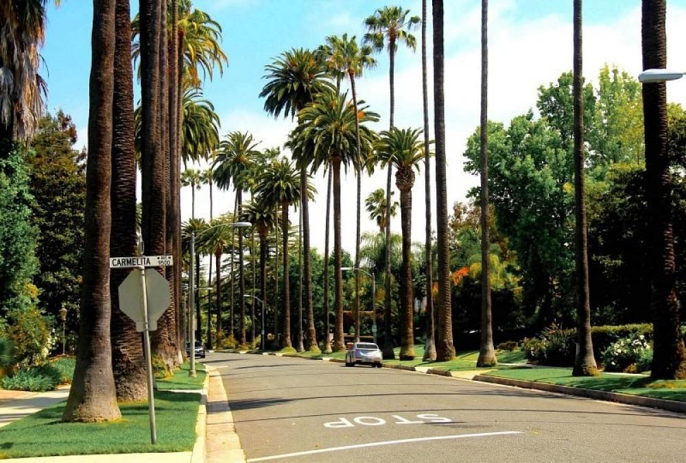 LA Highlights Private Tour