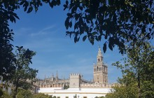 Panoramic Bus Tour of Seville