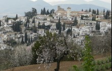 The Granada City and La Alhambra Tour from Seville