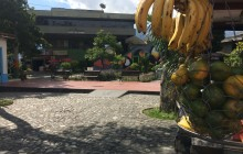 Private Medellin Market Places and Local Fruits