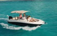 Boston Whaler Boat Rental