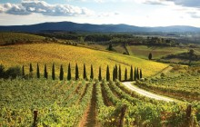 Private Full Day Tour to San Gimignano, Siena, and Chianti