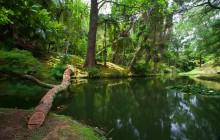 Mystic Furnas: Canoeing + Terra Nostra