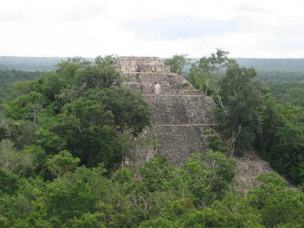 Tikal 1-Day Park Tour