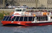 Sea Life London Aquarium with 24 Hour Thames River Cruise Access