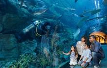 Dubai Deluxe Supersaver Pass - upto 7 Attractions