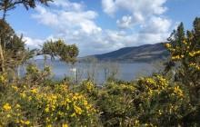 Edinburgh, Loch Ness and Highlands by Train - 3 Days