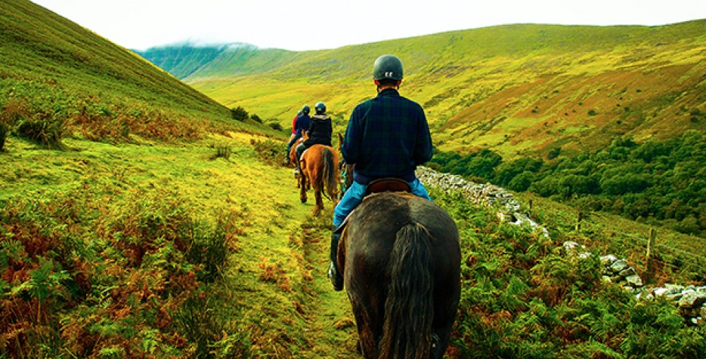 Horse Riding In Wild Wales - 2 Day/1 Night Trip
