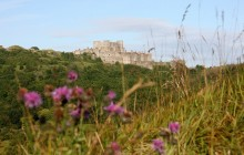 London/Heathrow to Dover Shared Transfer with Dover Castle