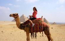 Camel/Horse around Pyramids at Sunset/Sunrise with Transfer