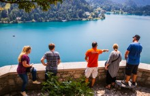 Bled Fairytale Half Day Tour from Ljubljana