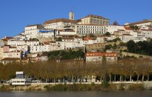 Small Group Dao & Coimbra Food + Wine Tour from Porto