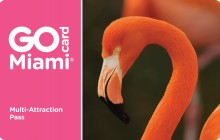 Go Miami Card - All Inclusive