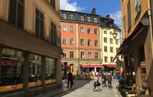 Private Stockholm Tour with Vasa Museum and Thiel Gallery