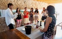 Small Group Arrabida Wine Tour
