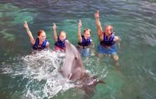 Puerto Morelos Delphinus: Couples Dreams