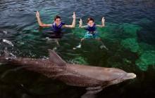 Puerto Morelos Delphinus: Dolphin Ride