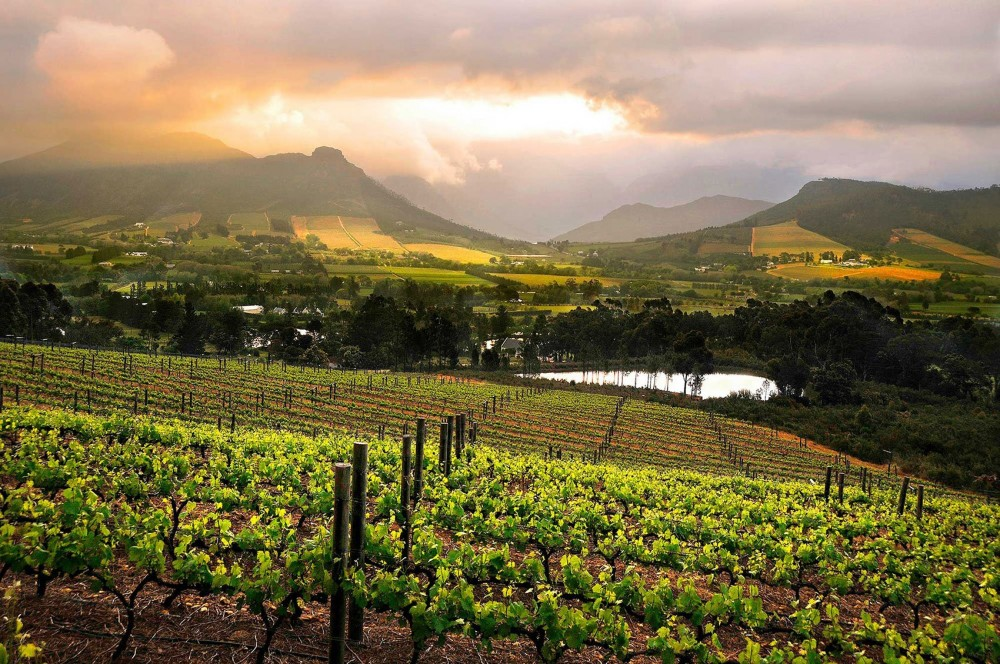 7 Day Garden Route and Wine Combo Tour