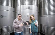 Small Group Minho & Vinho Verde Alvarinho Tour w/ Tastings & Food