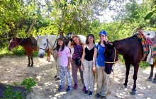Jungle and Beach Break Horse Back Riding Tour