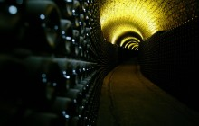 Small Group Aveiro & Bairrada Sparkling Wine Tour