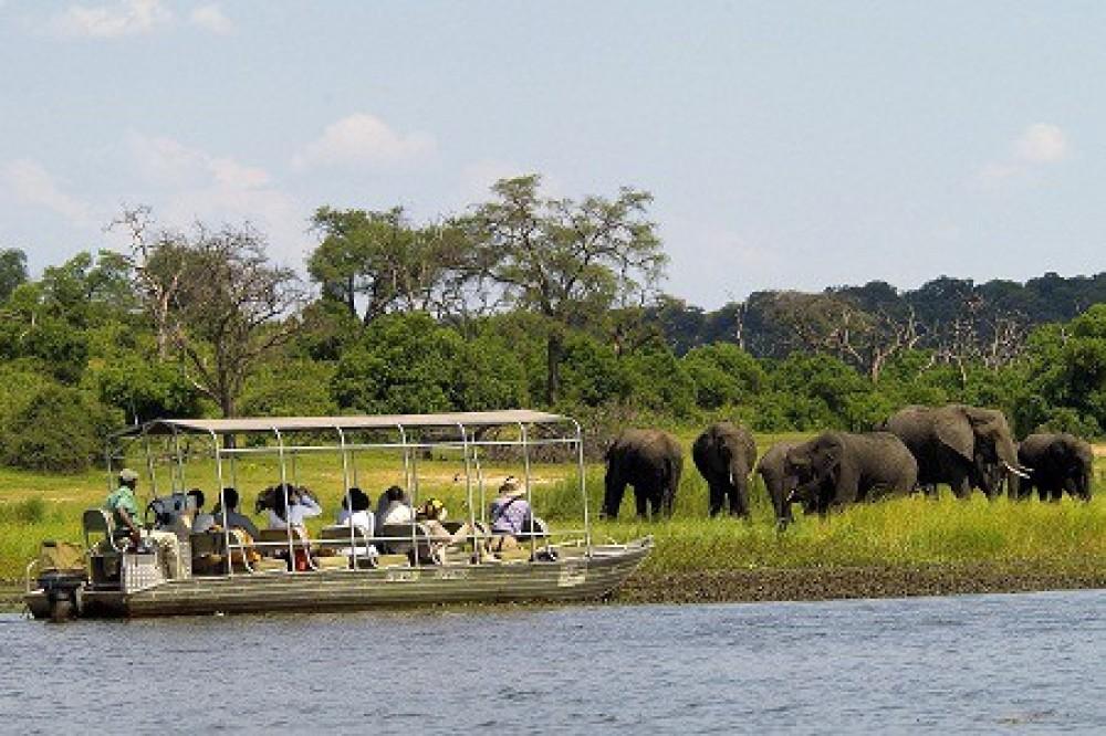 Chobe Overnight Safari