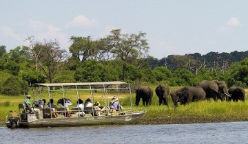 A picture of Chobe Overnight Safari
