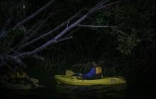 Bioluminescent Bay Night Kayaking Tour w/ transportation