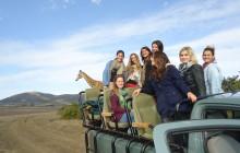 2 Day Wildlife Safari Tour