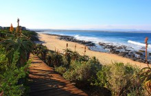 4 Day Cape To Addo Safari Tour (Return)