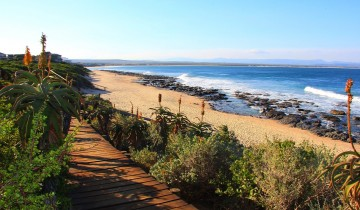 A picture of 5 Day Cape to Addo Safari Tour (One Way)