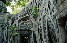 Small Group Cambodia Insider Tour (12 Days)