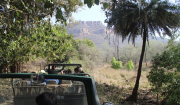 A picture of 8 Days - Golden Triangle with Ranthambore National Park